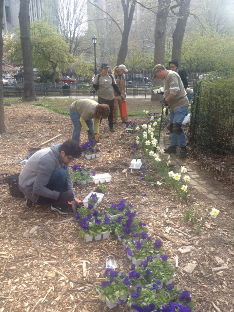 BNY Mellon planting flowers